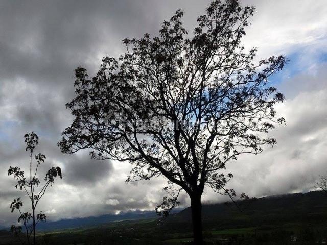 Entorno rural en Alcaraz