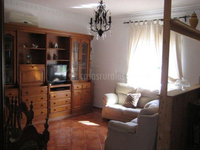 Sala de estar con frontal en madera y televisor