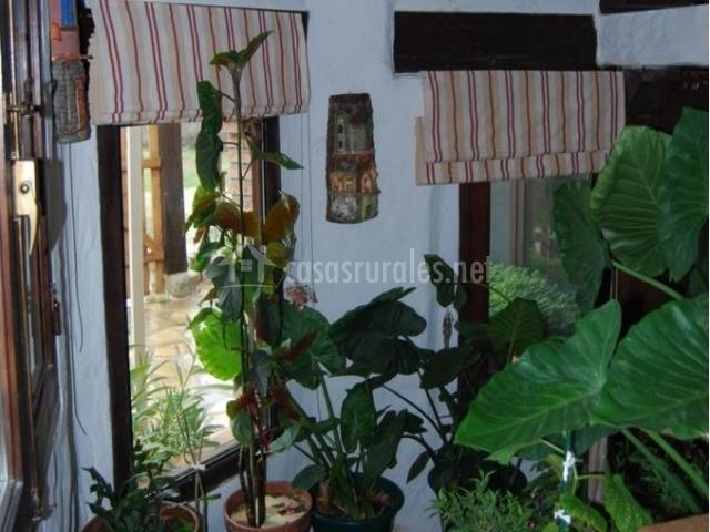 Escaleras de terrazo con plantas