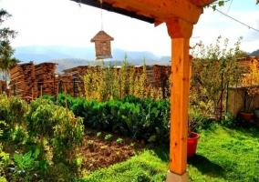 Huerta ecológica de la vivienda