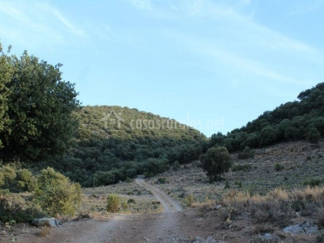 Zona natural para hacer senderismo