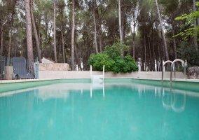 Amplia piscina al lado del pinar