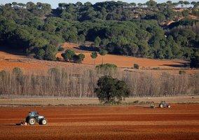 Labores agrícolas
