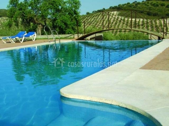 El tempranillo cortijo la ca ada en estepa sevilla for Hamacas de piscina