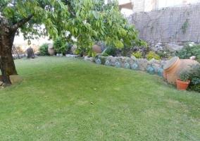 Vistas de los jardines con árboles