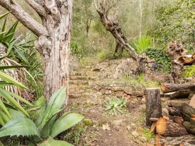 Vistas de los exteriores con troncos