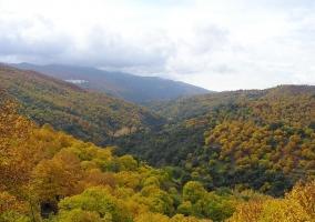 Valle del Genal
