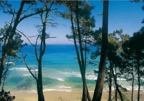 Zona de la playa de Oleiros