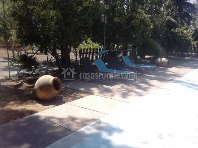 Vistas de la piscina con hamacas
