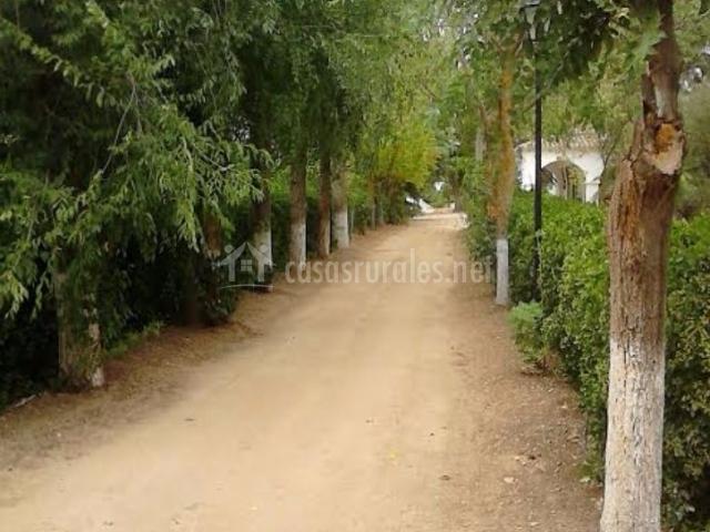Vistas del camino de acceso