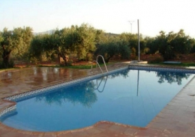 Vistas de la piscina amplia entre naturaleza