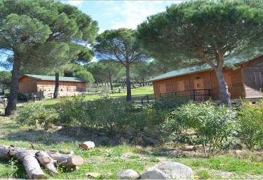 Paraje San Ginés - Andujar, Jaén