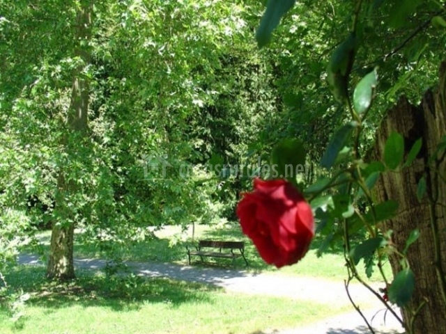 Vistas de las zonas exteriores con naturaleza