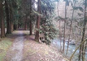 Zona de naturaleza