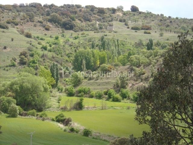 La casa de enmedio en olmeda de las fuentes madrid for Olmeda de las fuentes casas