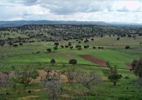 Zona natural con prados