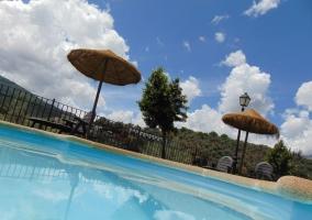 piscins