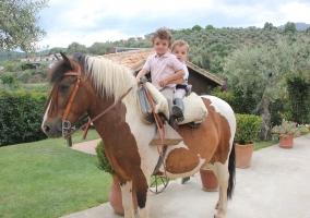 pony ideal niños