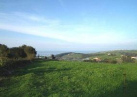 paisaje de campo