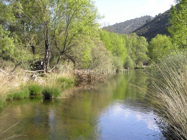 Río Estena en el Parque de Cabañeros