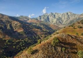 Zonas naturales en Candeleda