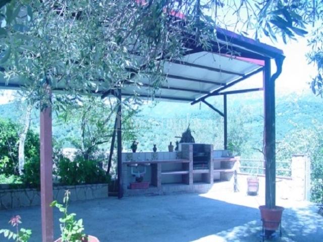 Terraza cubierta y barbacoa