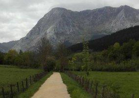 Zona natural del entorno con caminos