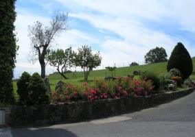 Vistas de las zonas exteriores con flores