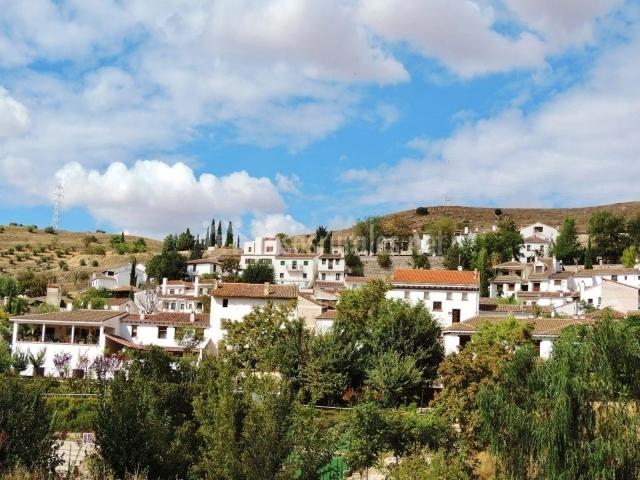 Las camelias casas rurales en olmeda de las fuentes madrid for Olmeda de las fuentes casas