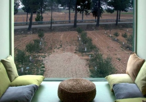 Sala chill out con olivos