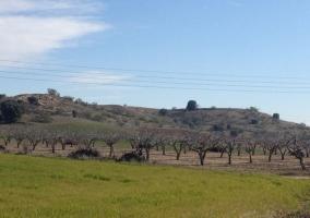 Zona natural del entorno con campos