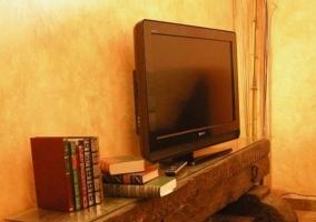 Sala de estar con detalle de madera original