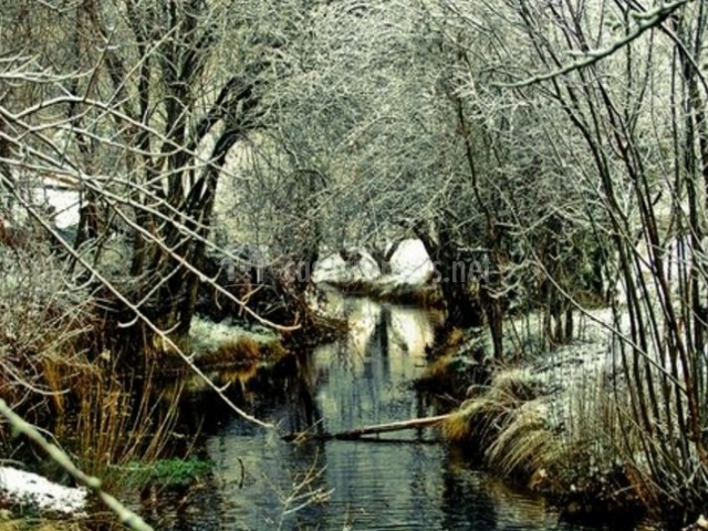 Río Cuervo en Vega del Codorno