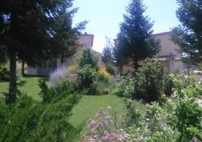 Jardín en verano