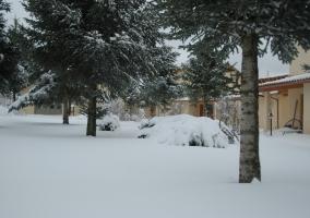 Nuestro jardín nevado