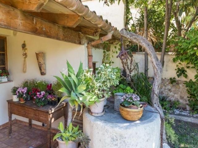 Vistas de las zonas exteriores con sus plantas
