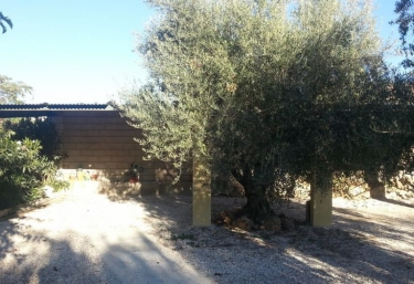 Casa Noguericas IV - Archivel, Murcia