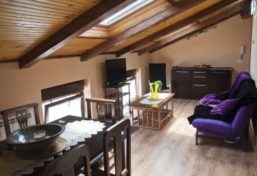 Apartamentos La Casa del Rebote - Acedo, Navarra