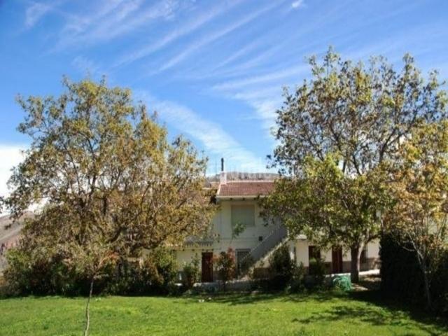 Vistas generales con zonas verdes y fachada