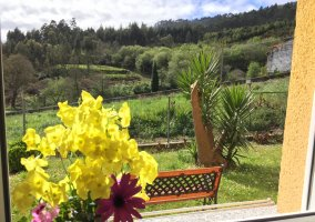 Vistas jardín trasero