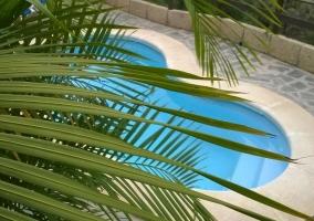 Vistas de la piscina y la naturaleza en el exterior
