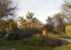 Vistas de los jardines con plantas de colores y caminos