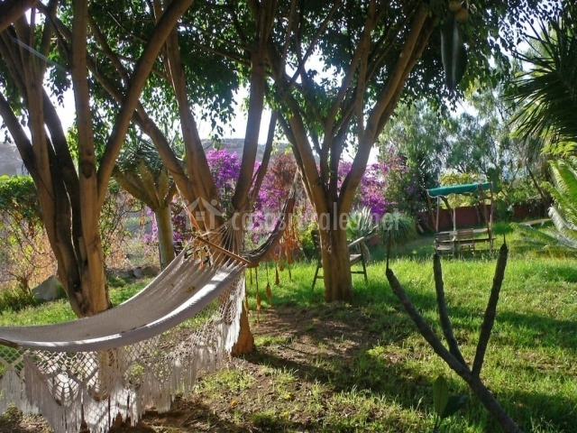 Tenerife natura en la guancha tenerife - Muebles de jardin tenerife ...