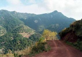 Zona de caminos para hacer senderismo