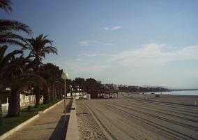 Zona natural de Miami Playa
