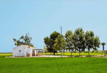 Caseta del Quet - Deltebre, Tarragona