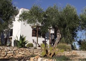 Acceso principal a la casa con plantas delante de la fachada