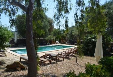 Finca Can Duvai- Orangenhaus - Son Servera, Mallorca