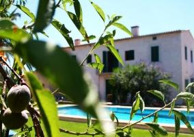 Acceso principal al alojamiento con piscina