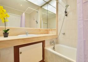 Aseo de la casa con bañera y espejo sobre el lavabo